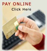 Pay Online Image with hand holding credit card